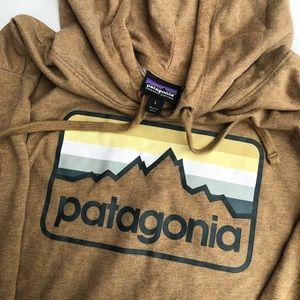 Patagonia Mens Hoodie
